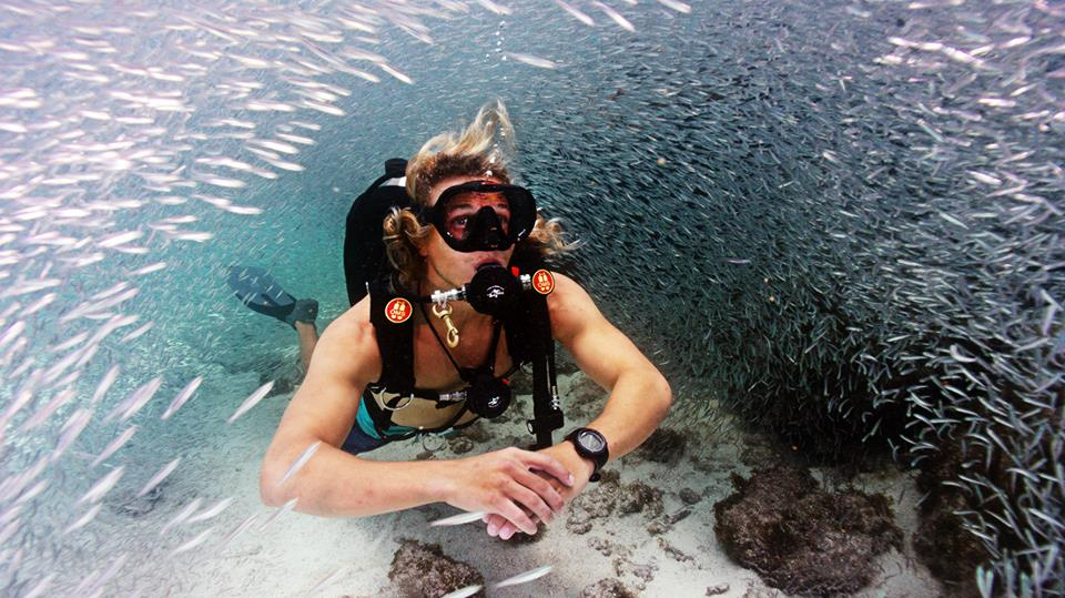 Key Largo Spearfishing, Scuba Diving, Snorkeling, Cruises & More
