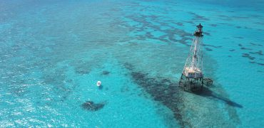 alligator reef, coral reef, clear water, blue water, snorkeling, sandbar charter